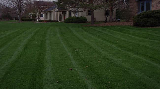 Waukesha Lawn Care